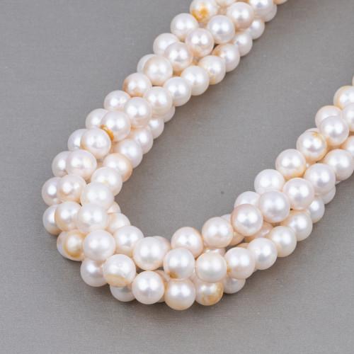 Perle Di Fiume Tondo 9,0-10,0mm AA Grigio Scuro