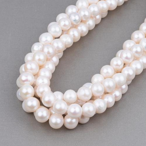 Perle Di Fiume Tondo 10,0-10,5mm AAAAA Rosa