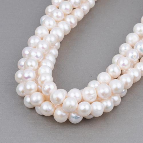 Perle di Fiume Tondo 11,5-12,5mm AAAA Bianco