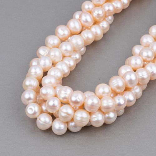 Perle Di Fiume Tondo 11,5-13,0mm AAAA Bianco